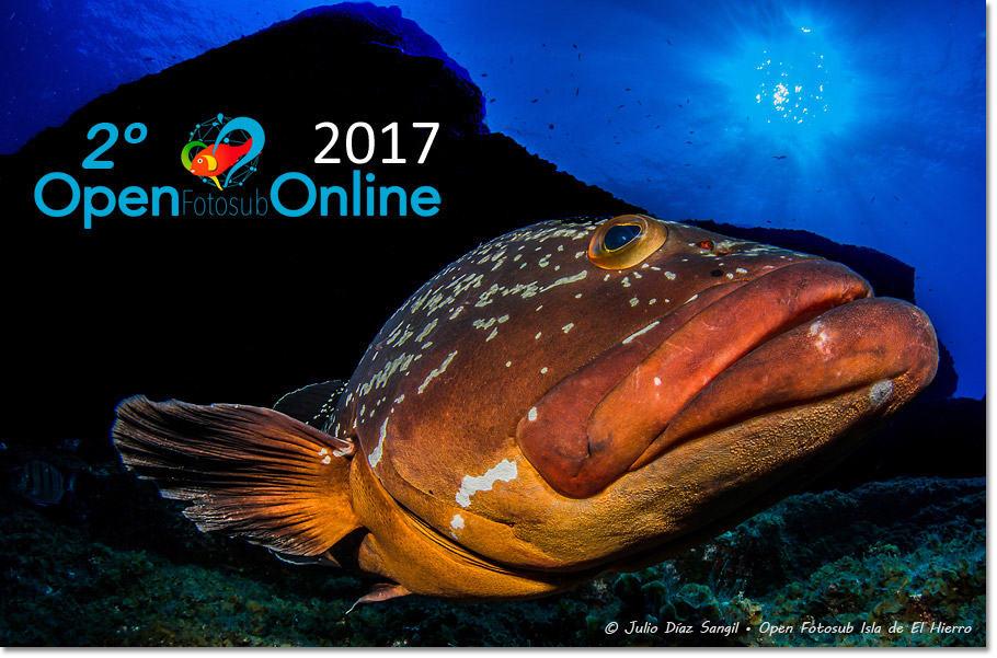 2º Open Fotosub Online Isla de El Hierro