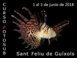 Curso Fotosub Sant Feliu de Guíxol