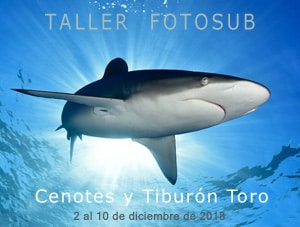 Taller Fotosub Riviera Maya 2018